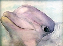 Dolphin in Watercolor