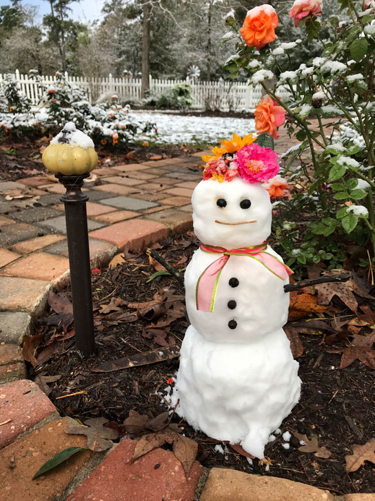 Mrs. Padilly's SnowWoman