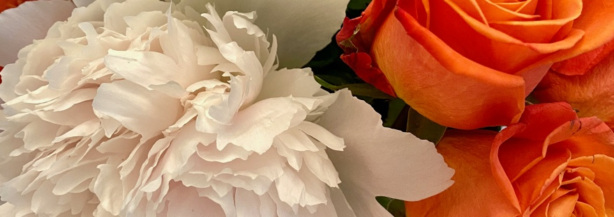 Mrs. Padillys Flowers